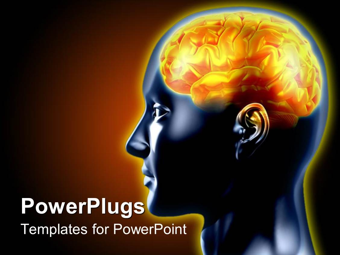 17 Best Images About Brain Powerpoint Templates Human