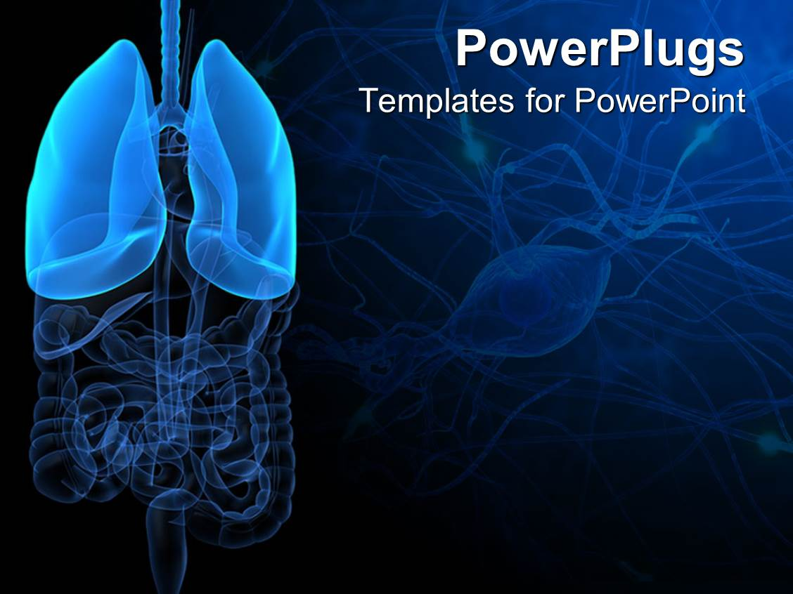 powerpoint template: 3d representation of lungs and human anatomy, Powerpoint templates