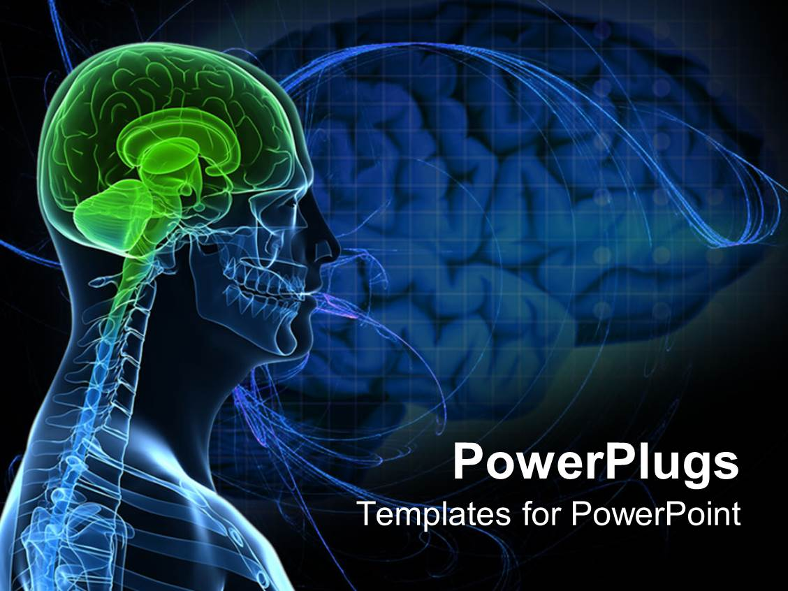 Top human body powerpoint templates backgrounds slides and ppt a template featuring anatomy of a healthy brain of the human body toneelgroepblik Image collections