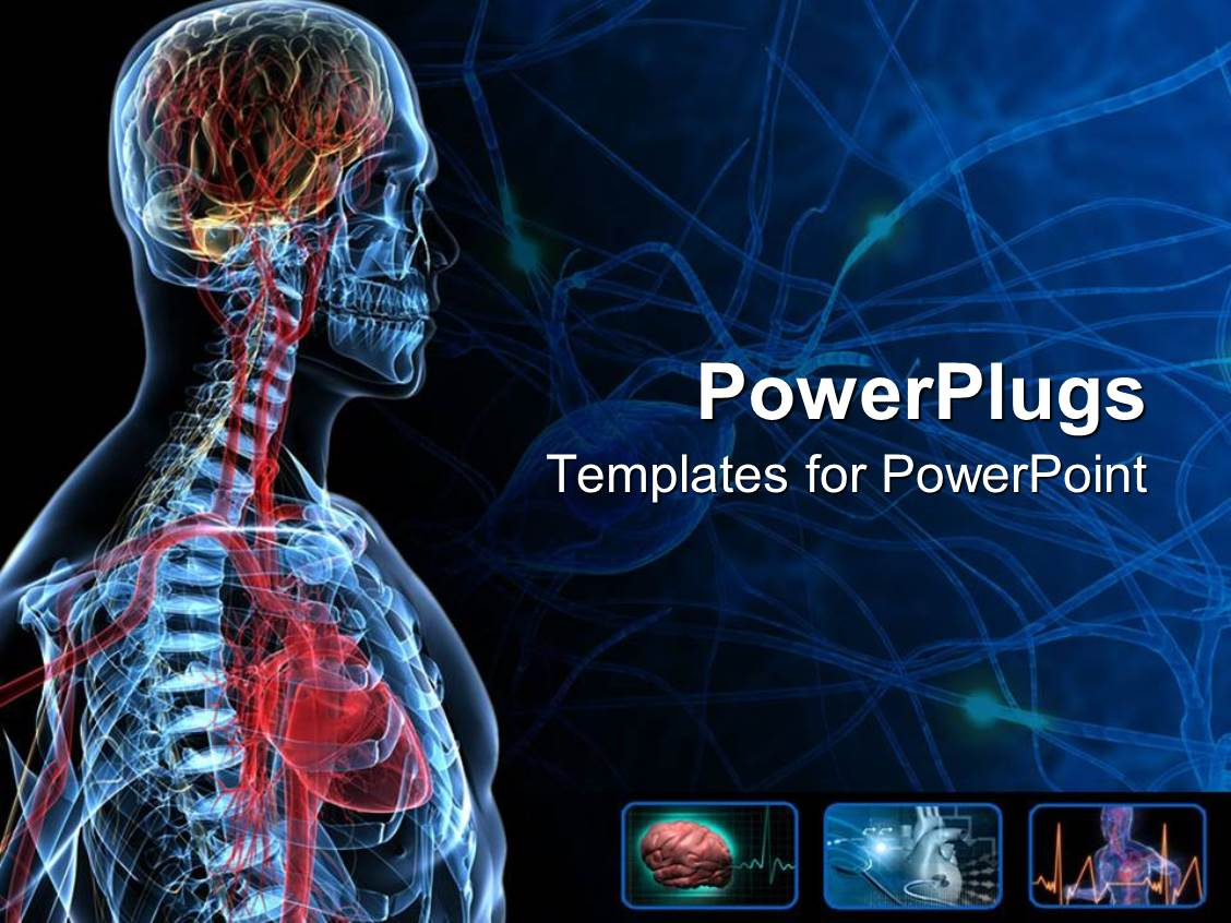 anatomy ppt templates free download - powerpoint template the anatomy of a human with bluish