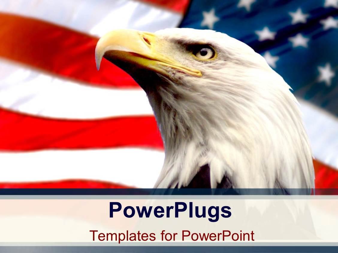 Eagle powerpoint templates crystalgraphics elegant theme enhanced with bald eagle with american flag white background toneelgroepblik
