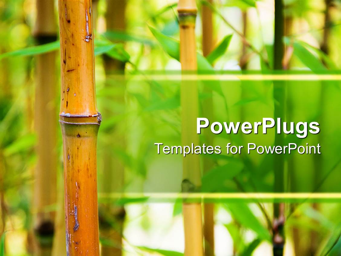 Nature Background For Powerpoint Zrom
