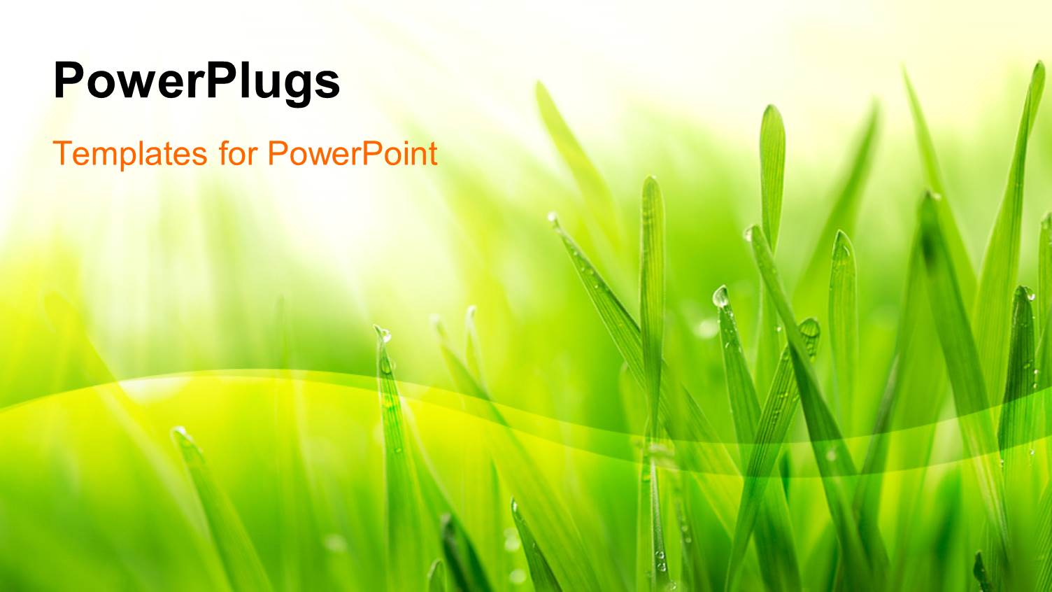 powerpoint template close up of grass covered with
