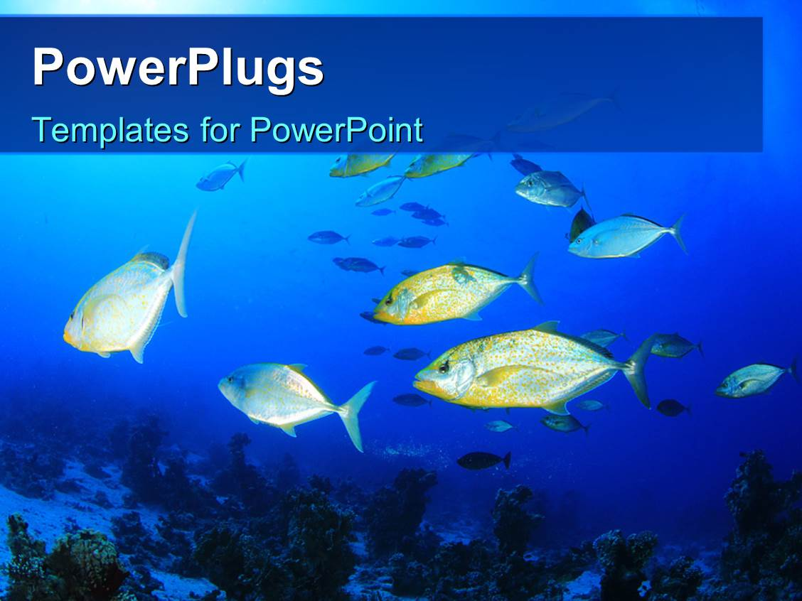 ocean powerpoint template choice image - templates example free, Modern powerpoint
