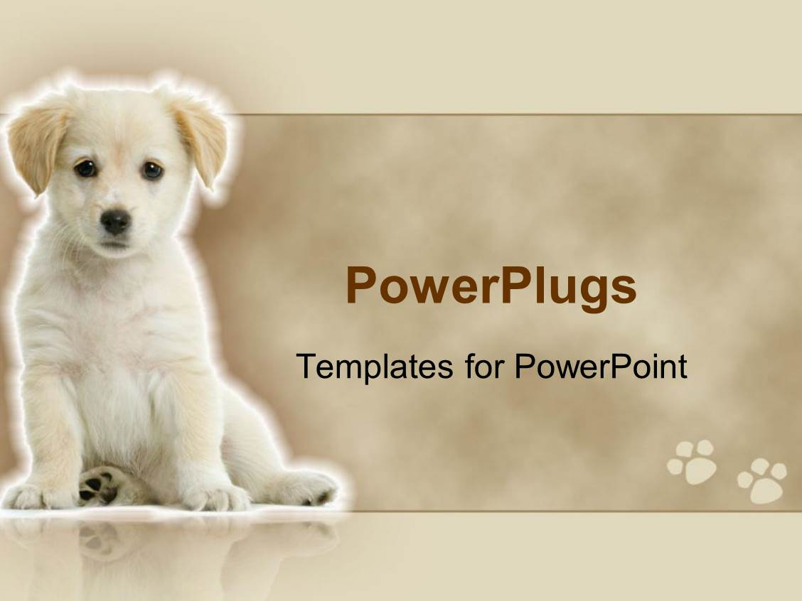 powerpoint template cute white labrador retriever puppy