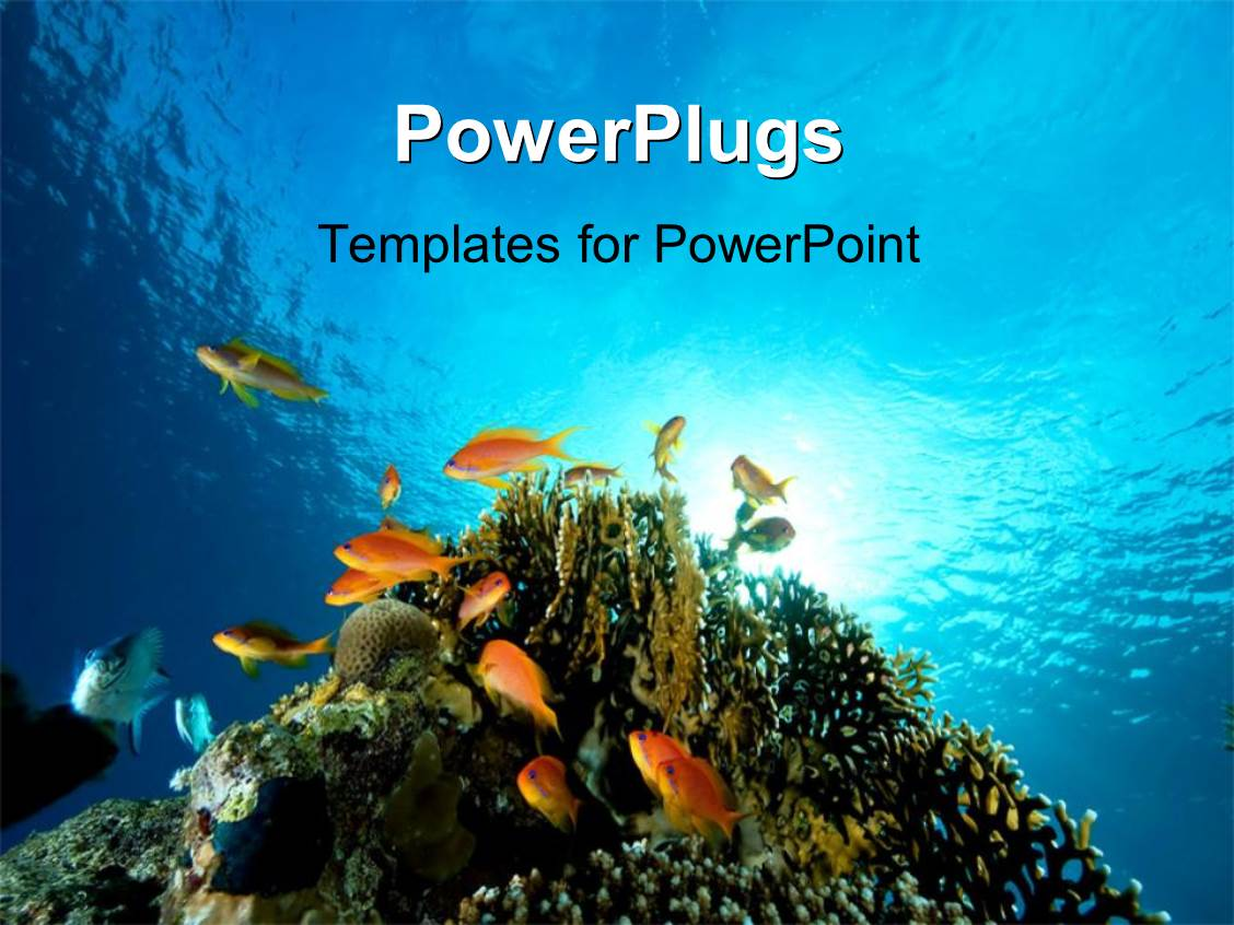 beach themed powerpoint templates awesome charming ocean powerpoint