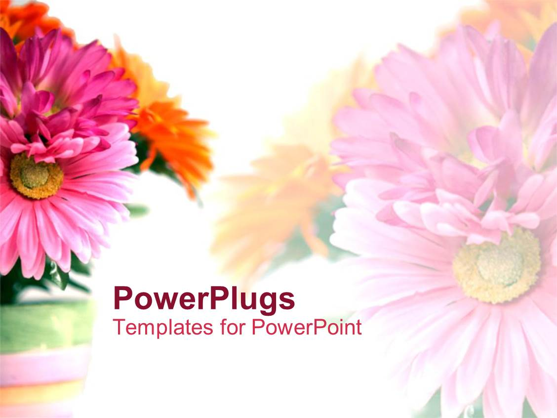 Flower Stock Images RoyaltyFree Images amp Vectors