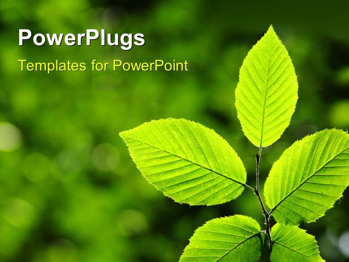 free environmental powerpoint templatespowerpoint