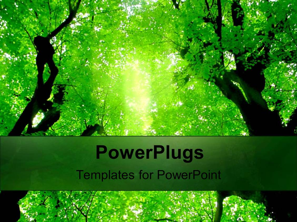 powerpoint template green trees above in forest green