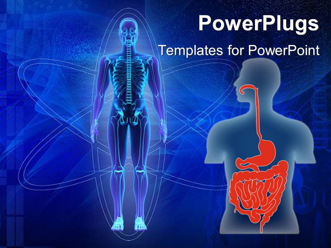 powerpoint template human body showing skeleton and human