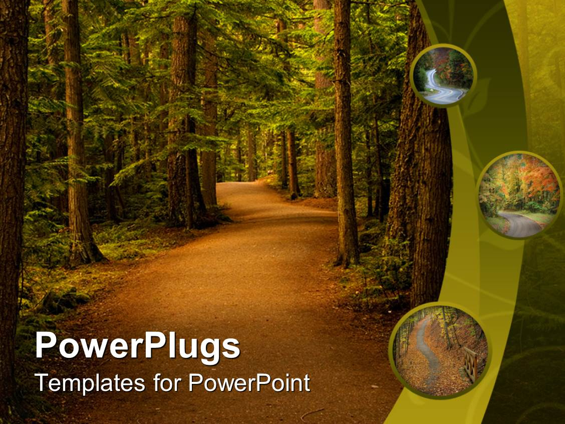powerpoint template  peaceful trail in the forest nature