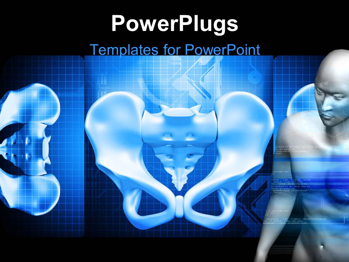PowerPoint Template Displaying the Pelvis in the Form of an Inner View with a Human Being at One Side