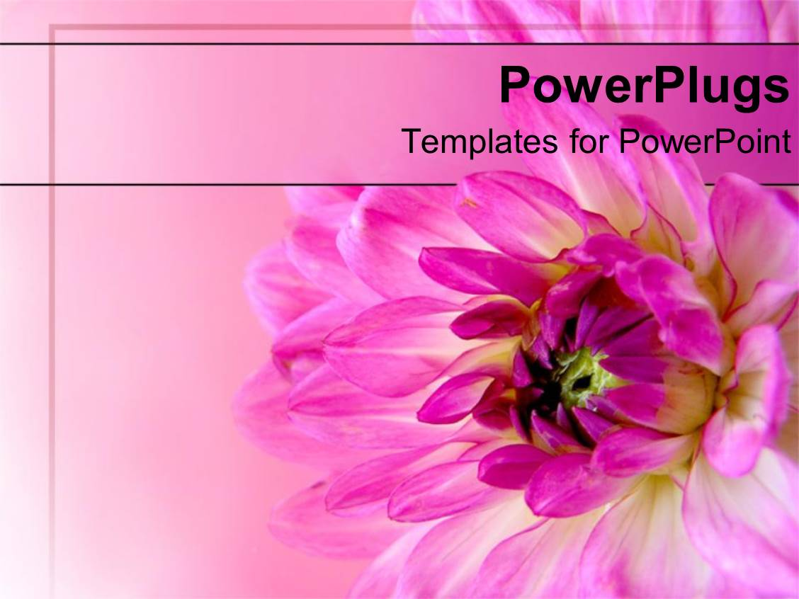 flowers powerpoint templates | crystalgraphics, Modern powerpoint
