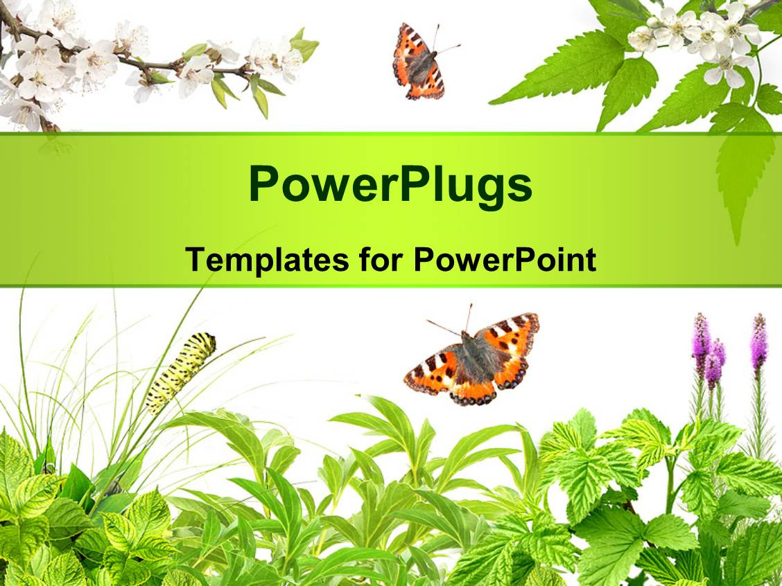powerpoint template: summer frame with green leaves, flowers and, Modern powerpoint