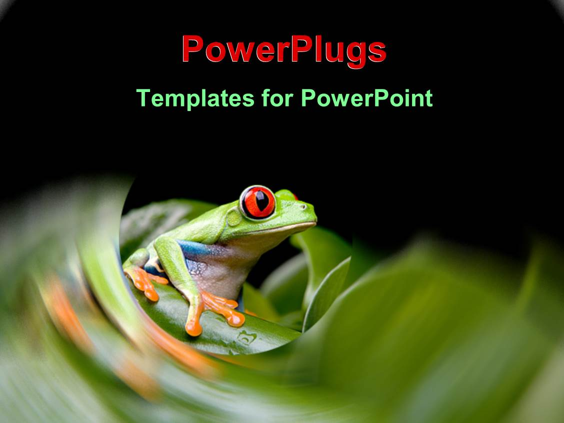 powerpoint template tiny frog with large red eyes on green stem