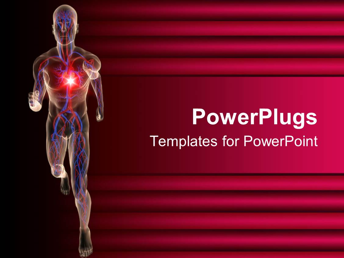 cardiac ppt template - powerpoint template transparent 3d depiction of a human
