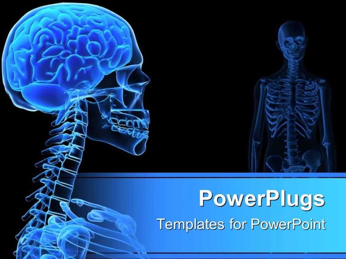 powerpoint template xray of the human head showing on